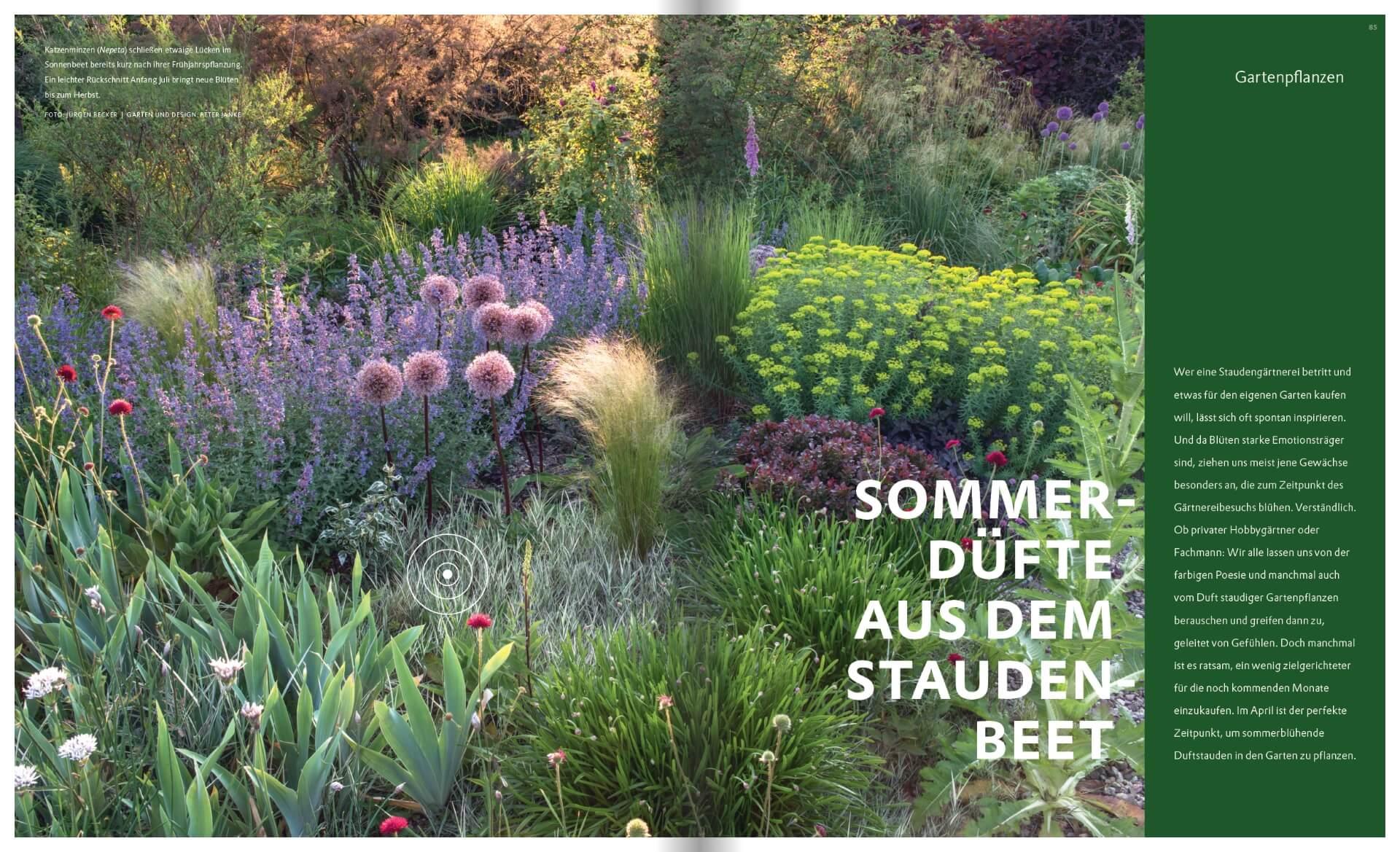 GARTENDESIGN INSPIRATION 2/2018: Sommerdüfte aus dem Staudenbeet