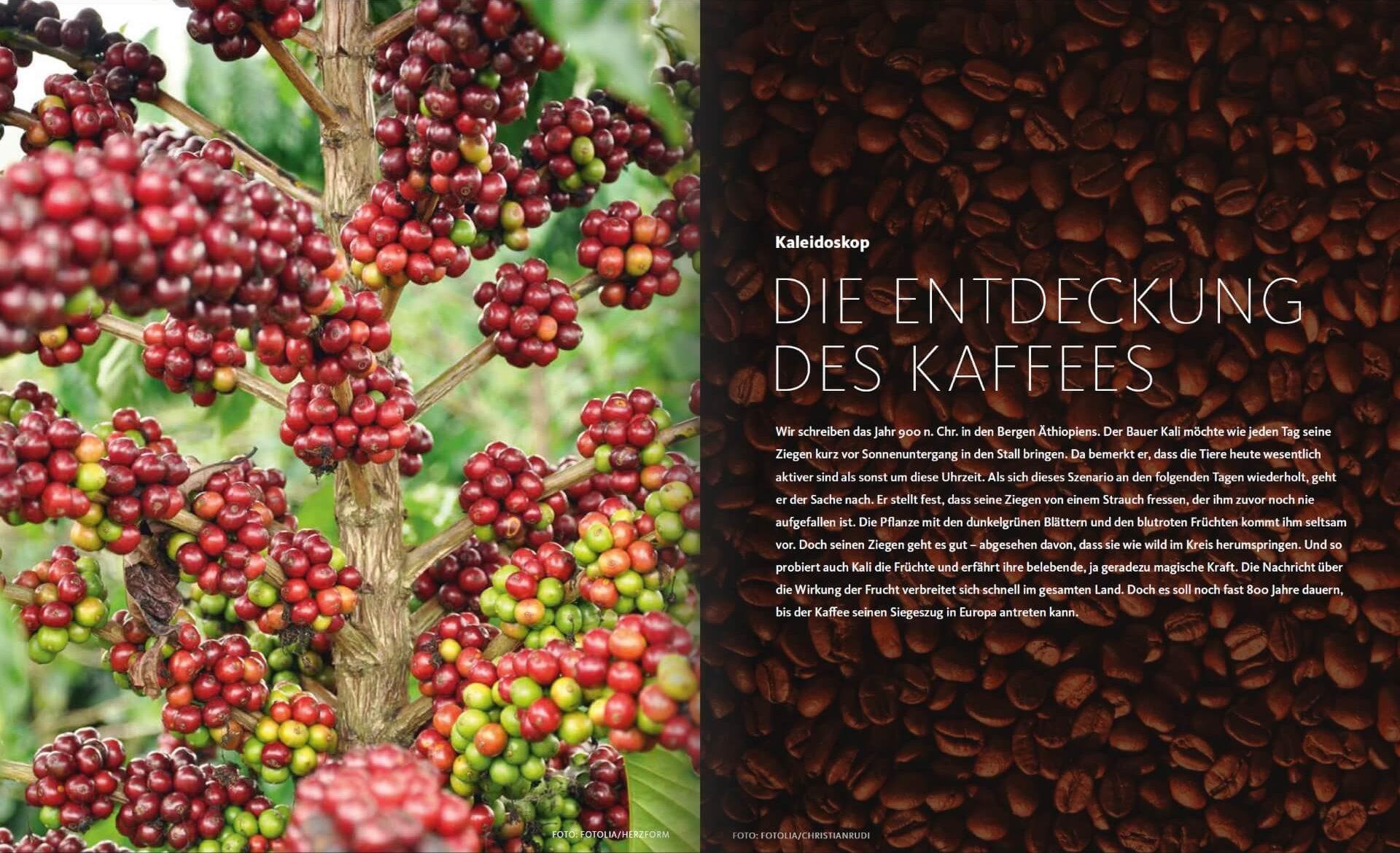 GARTENDESIGN INSPIRATION 4/2017: Entdeckung des Kaffees