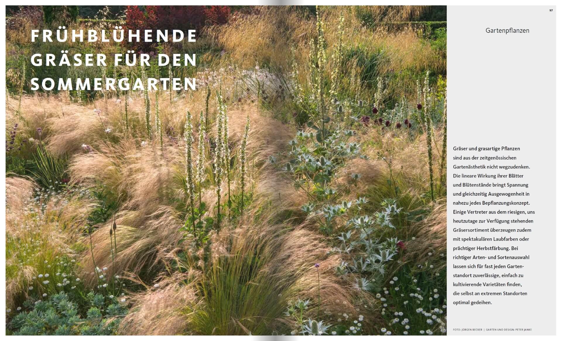 GARTENDESIGN INSPIRATION 3/2018: Gräser für den Sommergarten