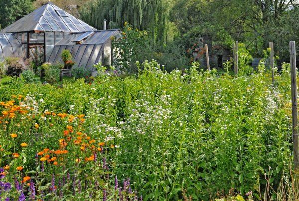 Gartenanlage Künstlergarten