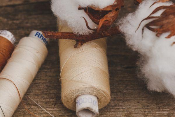 Pflanzenfasern aus der Natur: Baumwolle