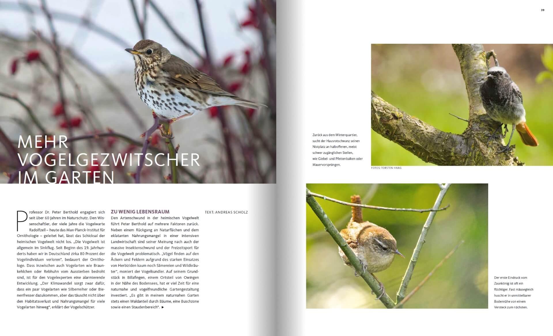 GARTENDESIGN INSPIRATION Ausgabe 3/2019: Mehr Vogelgezwitscher im Garten