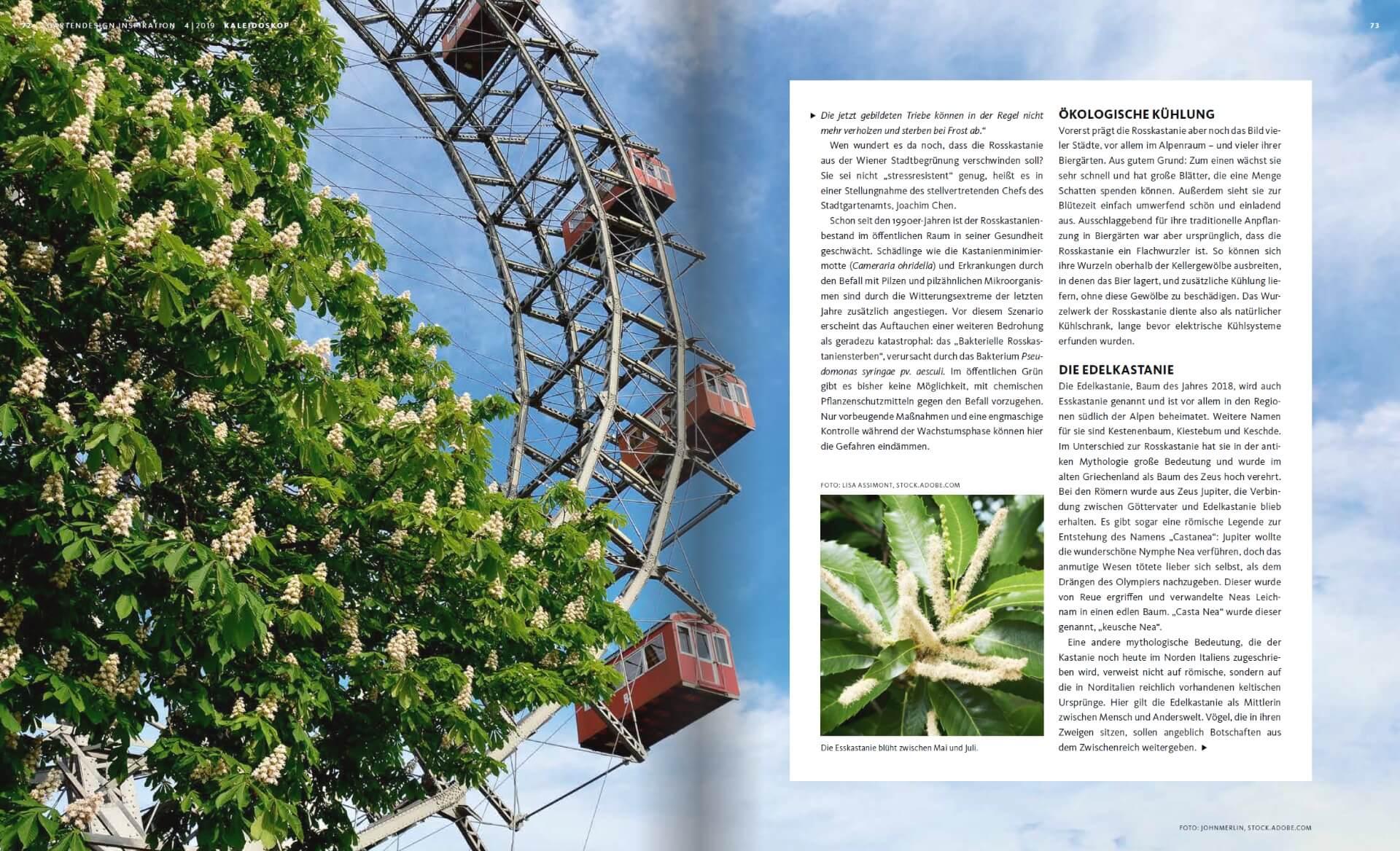 GARTENDESIGN INSPIRATION Ausgabe 4/2019: Die Kastanie