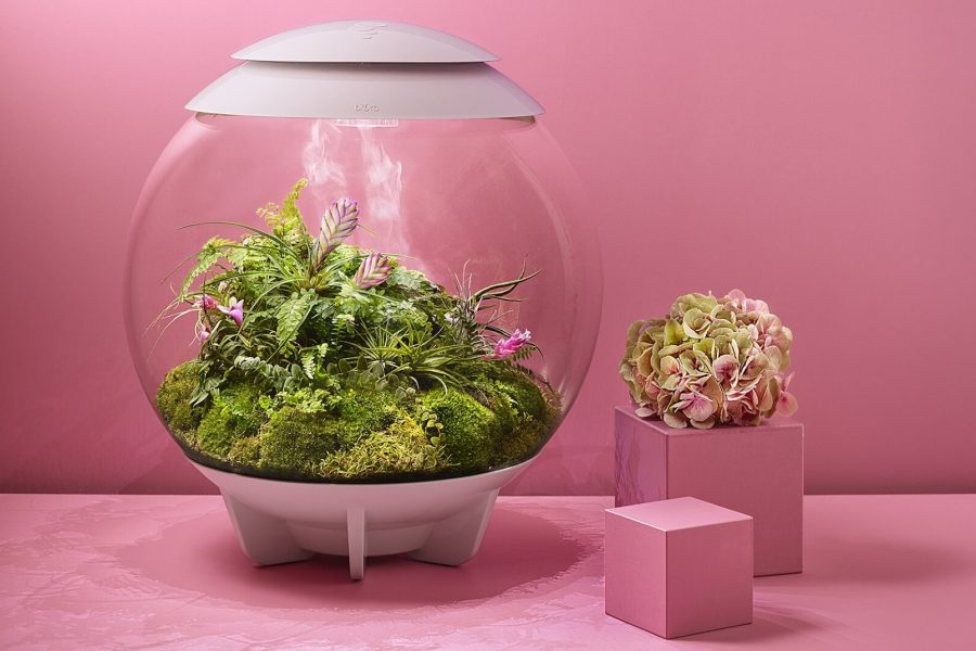 Design-Terrarium biOrb AIR by Oase