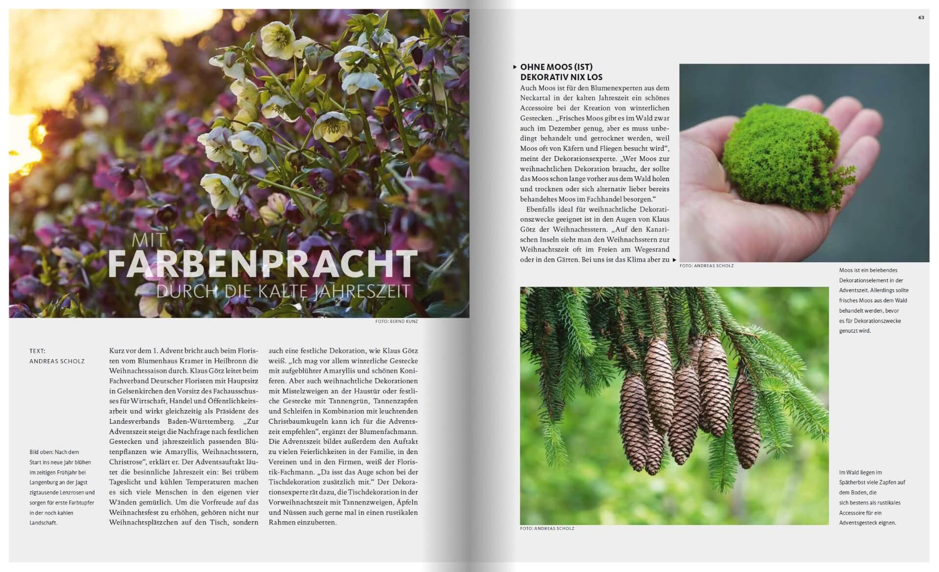 GARTENDESIGN INSPIRATION Ausgabe 6/2019: Gartenpflanzen und Farbenpracht im Winter