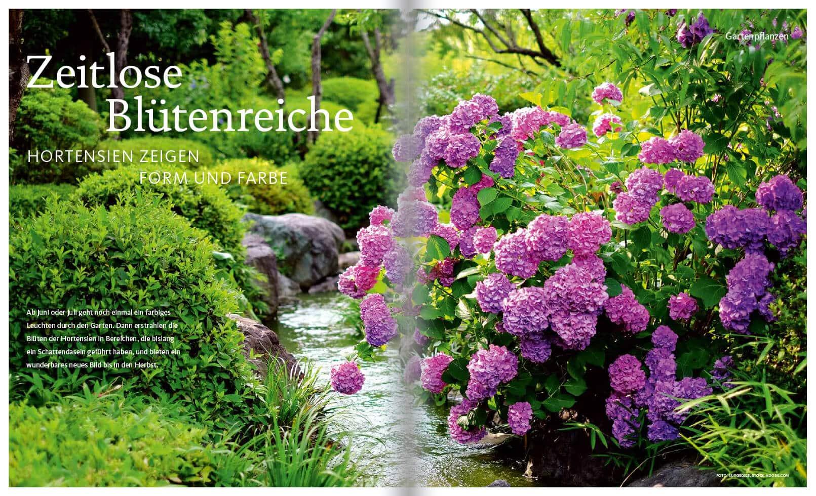 bluetenreiche-1